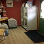 This is our waiting room front lobby. You can see the kennel where we keep the cats that are available for adoption.